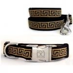 More Dog Collars and Leads