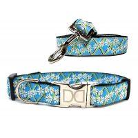 Daisy Collection - Leash & Collar