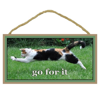 Go For It - Inspirational Wooden Sign