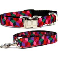 Block Party collar & leash collection