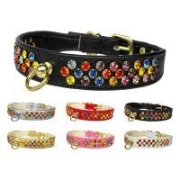 The Confetti Crystal Sprinkles Dog Collar Collection